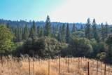 8005 Boondock Trail - Photo 63