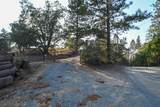 8005 Boondock Trail - Photo 66