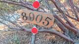 8005 Boondock Trail - Photo 67