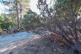 8005 Boondock Trail - Photo 68
