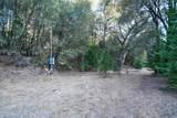 8005 Boondock Trail - Photo 69