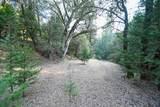 8005 Boondock Trail - Photo 71
