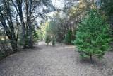 8005 Boondock Trail - Photo 72
