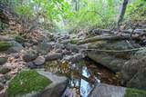 8005 Boondock Trail - Photo 79