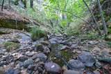 8005 Boondock Trail - Photo 80