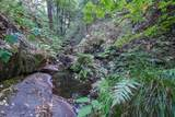 8005 Boondock Trail - Photo 81
