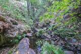 8005 Boondock Trail - Photo 82