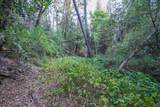 8005 Boondock Trail - Photo 86