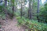 8005 Boondock Trail - Photo 87