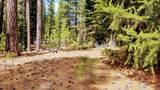 655 Bobcat Trail - Photo 5