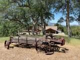43753 Parker Pass Road - Photo 22