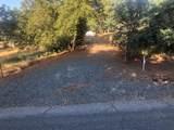 10372 Chapulin Drive - Photo 1