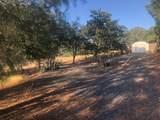 10372 Chapulin Drive - Photo 2