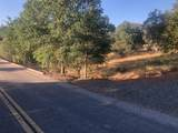 10372 Chapulin Drive - Photo 4