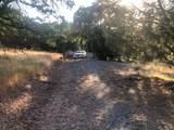10372 Chapulin Drive - Photo 6