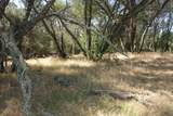 0 Mini Ranch Road - Photo 13