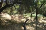 0 Mini Ranch Road - Photo 18