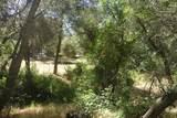 0 Mini Ranch Road - Photo 22
