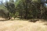 0 Mini Ranch Road - Photo 3