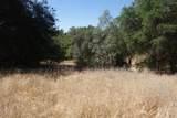 0 Mini Ranch Road - Photo 4