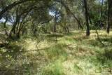 0 Mini Ranch Road - Photo 44