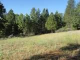 5410 Old Emigrant Trail - Photo 13