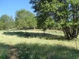 5410 Old Emigrant Trail - Photo 6