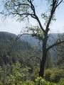 0 3820 Bear Ridge Rd - Photo 10