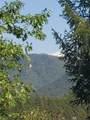 0 3820 Bear Ridge Rd - Photo 4