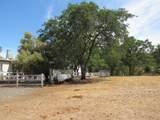 10390 Chapulin Way - Photo 14