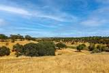 70 Cormorant Drive - Photo 25