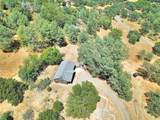 6941 Therese Trail - Photo 38