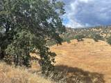 0 Pepito Drive - Photo 2