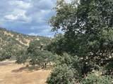 0 Pepito Drive - Photo 5