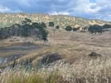 0 Pepito Drive - Photo 7