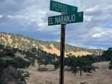 0 Pepito Drive - Photo 9