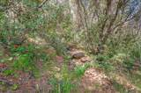 9941 Spring Hill Ranch Road - Photo 21