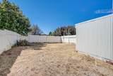 5210 Meadow View Lane - Photo 59