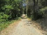 10401 Carrington Lane - Photo 20