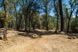 17404 Winding Oaks - Photo 3
