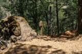 17404 Winding Oaks - Photo 4