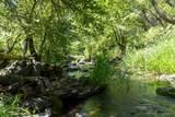 17404 Winding Oaks - Photo 6