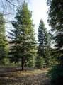 1 Digger Pine Lane - Photo 3