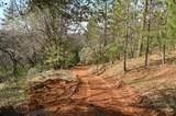 1 Digger Pine Lane - Photo 7