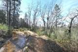 1 Digger Pine Lane - Photo 9