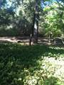 16600 Old Stagecoach Road - Photo 20