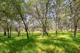 4951 Olive Highway - Photo 6