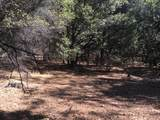 20922 Spring Ranches Road - Photo 3