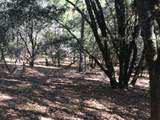20922 Spring Ranches Road - Photo 8