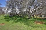 6535 Curtola Ranch Road - Photo 4